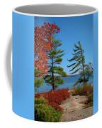 Windswept Point In Killbear Coffee Mug