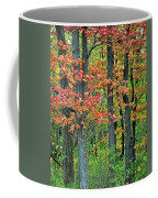Windy Day Autumn Colors Coffee Mug