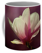 Wine And Cream Magnolia Blossom Coffee Mug
