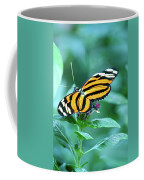 Wing Wonders Coffee Mug