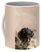 Wingless Fly Coffee Mug