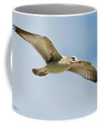 Wings Aloft Coffee Mug