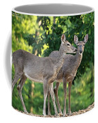 Wink Wink Coffee Mug