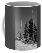 Winter Alpine Trees, Mount Rainier National Park, Washington, 2016 Coffee Mug