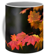 Winter Approaches... Coffee Mug