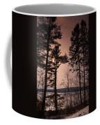 Winter At Nepaug Coffee Mug