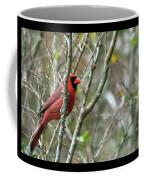 Winter Cardinal Sits On Tree Branch Coffee Mug