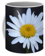 Winter Daisy Coffee Mug