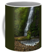 Winter Falls Coffee Mug