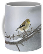Winter Finch 2010 Coffee Mug