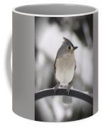 Winter Gray - Bird Coffee Mug