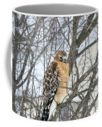 Winter Hawk Coffee Mug