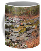 Winter Morning On Marble Creek 1 Coffee Mug
