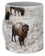 Winter Pasture Coffee Mug