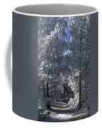 Winter Pathway Coffee Mug