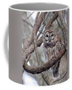 Winter Perch Coffee Mug