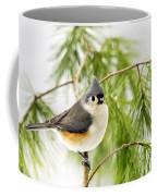 Winter Pine Bird Coffee Mug