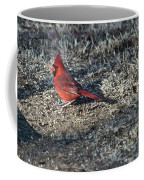 Winter Redbird Coffee Mug