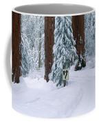 Winter Road Into Sequoia National Park Coffee Mug