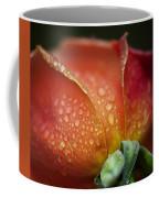 Winter Rose Four Coffee Mug