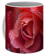 Winter Rose Two Coffee Mug