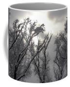 Winter Solstice Utah Coffee Mug