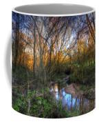 Winter Stream Sunset Coffee Mug