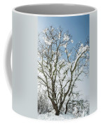 Winter Tree At Berry Summit Coffee Mug