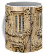 Winter Windows. Coffee Mug