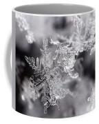 Winter's Beauty Coffee Mug