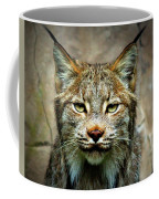 Wise Bob Cat Coffee Mug