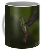 With A Rufous Tail... Coffee Mug