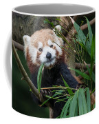 Wizened Red Panda Coffee Mug
