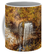 Wolcott Falls Ledge Coffee Mug by William Norton