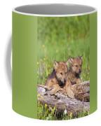 Wolf Cubs On Log Coffee Mug