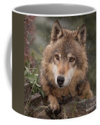 Wolf Face Coffee Mug