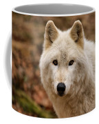 Wolf Watching Coffee Mug