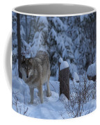 Wolf Wonderland Coffee Mug