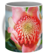 Wonderful Bright Pink Waratah Bud Coffee Mug