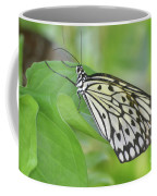 Wonderful Up Close Look At A Large Tree Nymph Butterfly Coffee Mug