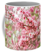 Wonderfully Delicate Pink Cherry Blossoms At Canberra's Floriade Coffee Mug