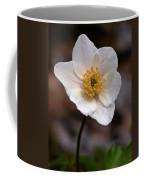Wood Anemone 1 Coffee Mug