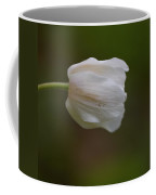 Wood Anemone 5 Coffee Mug