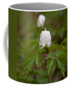 Wood Anemone Heavy From The Rain Coffee Mug