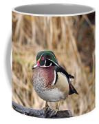 Wood Duck 3 Coffee Mug