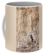 Wood Duck Drake 2 Coffee Mug