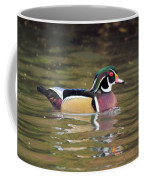 Wood Duck In A Pond Coffee Mug
