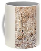 Wood Duck Mates 2018 Coffee Mug