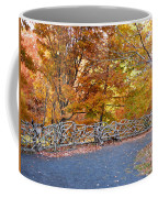 Wood Fence 1 Coffee Mug