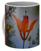 Wood Lily With Lake Superior In Background Coffee Mug